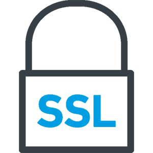 SSL icon copy